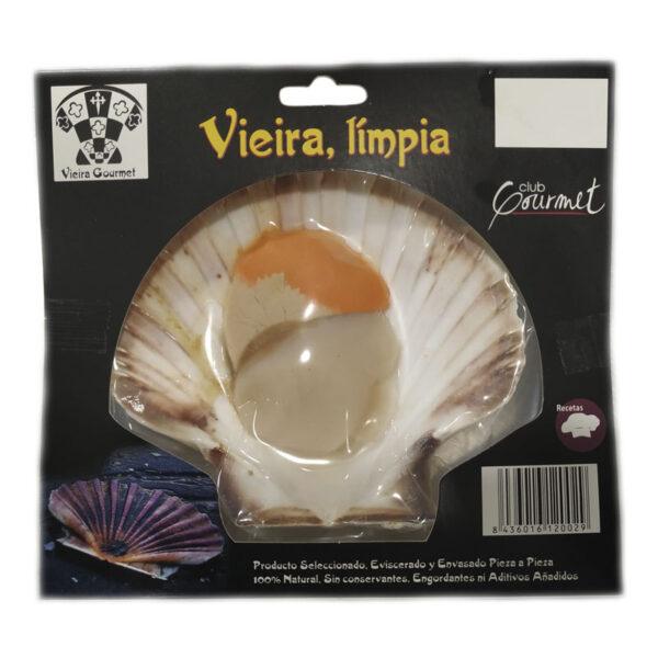 Vieira con coral